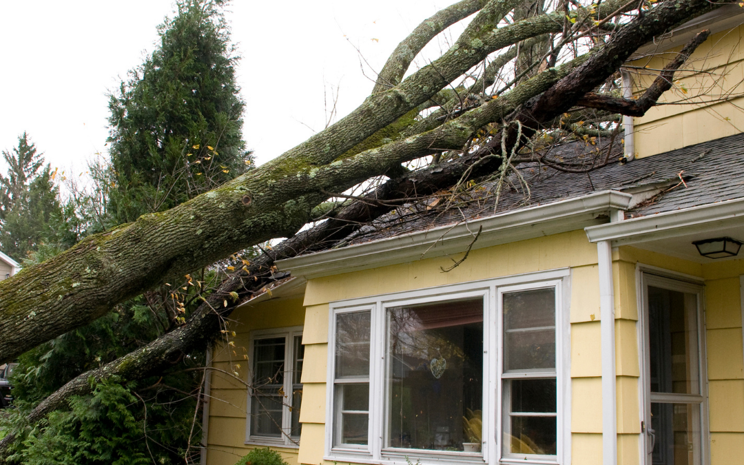 How to Clean-Up Your Home After A Storm
